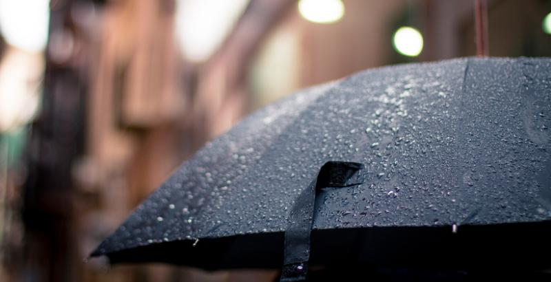 Зонт _ 4